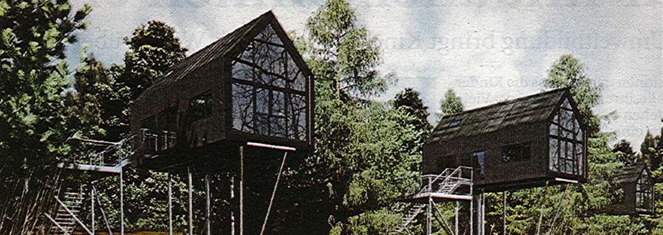 180426_Urlaub-in-den-Baumwipfeln_header_neu